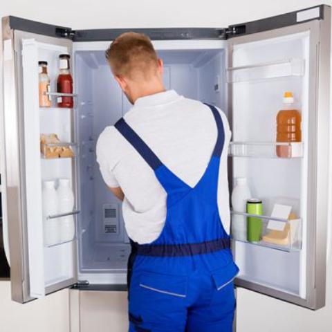 assistencia tecnica em geladeira